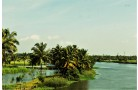 KERALA TOUR PACKAGE 4DAYS / 3NIGHTS