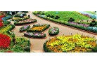 OOTY KODAIKANAL TOUR PACKAGE 5DAYS / 4NIGHTS