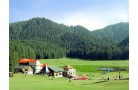 7 DAYS/6 NIGHTS SHIMLA MANALI AND AGRA