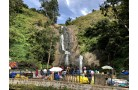 OOTY & KODAIKANAL HONEYMOON TOUR PACKAGE 5 DAYS/4 NIGHTS