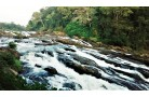 ATHIRAPPILLY & MUNNAR - BUDGET HONEYMOON TOUR PACKAGE 4 DAYS/ 3 NIGHTS